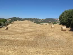 Siena, le Crete Senesi e la Val d'Orcia