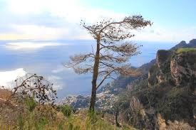 viaggio di istruzione e turismo scolastico sulla Costiera Amalfinata