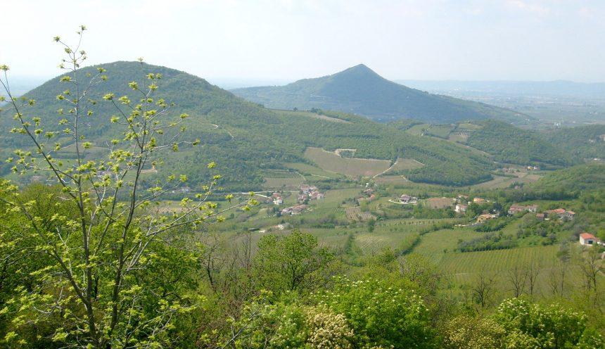 Viaggio di istruzione e turismo scolastico per i colli Euganei