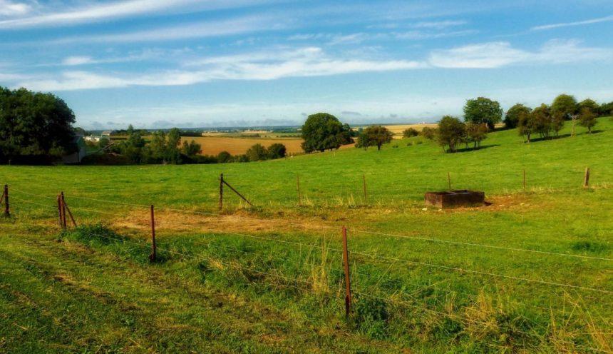 Progetto formativo e conoscenza di un'azienda agricola sostenibile
