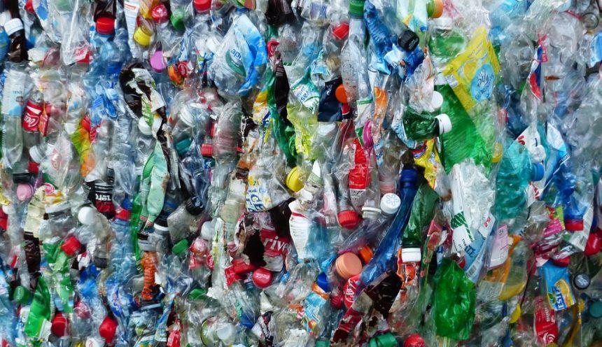 Progetto formativo riciclaggio