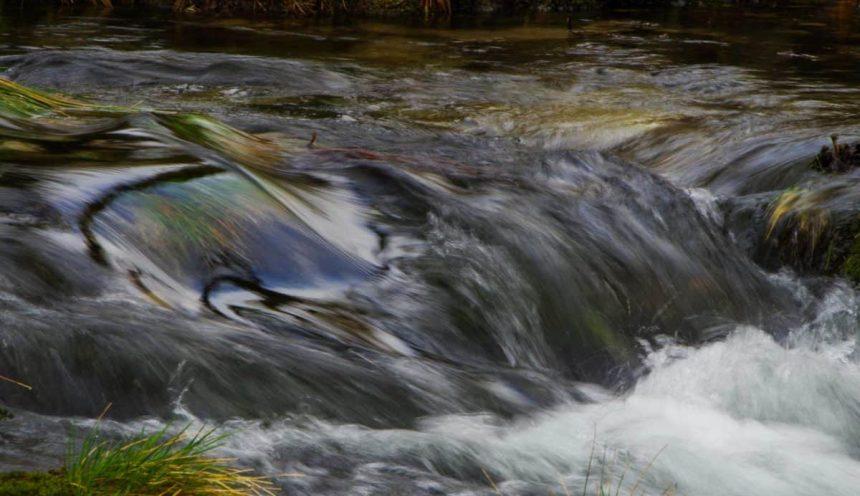 Progetto formativo dedito alla conoscenza del corso del fiume