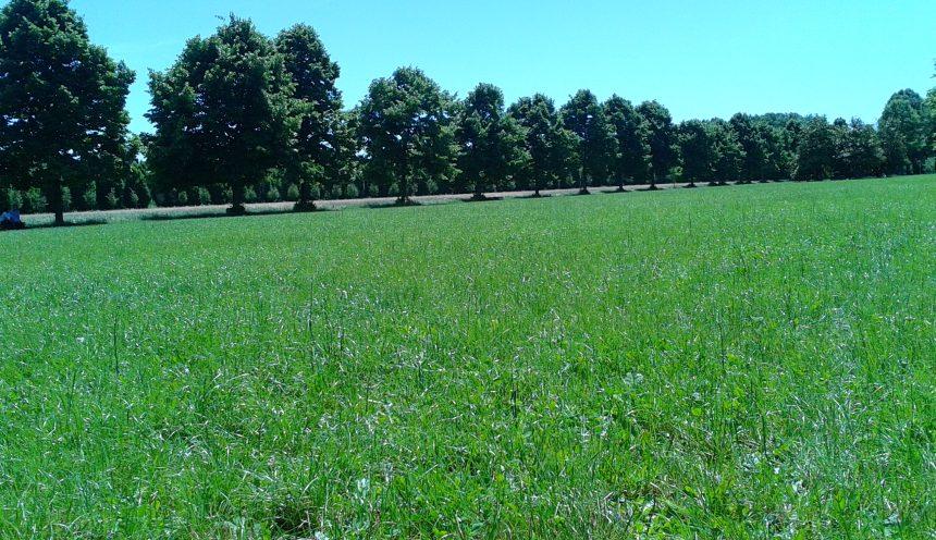 Gita scolastica alla scoperta del Parco Nord Milan