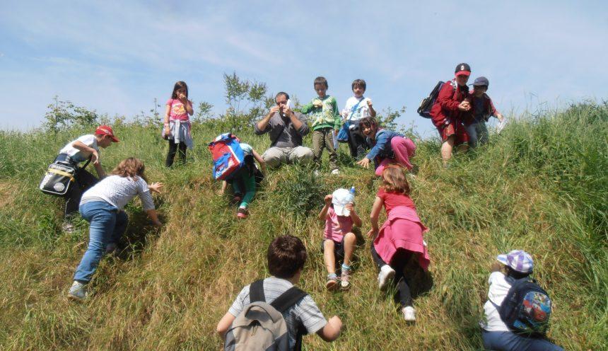 uscita didattica-Parco naturale Oglio Sud, Oasi WWF Le Bine